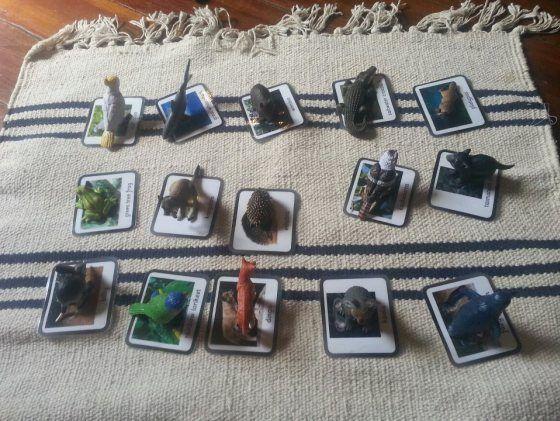 Australian animal Montessori matching game