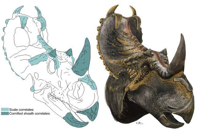 Recreating Prehistoric Animals in Art The Palaeoartist/'s Handbook