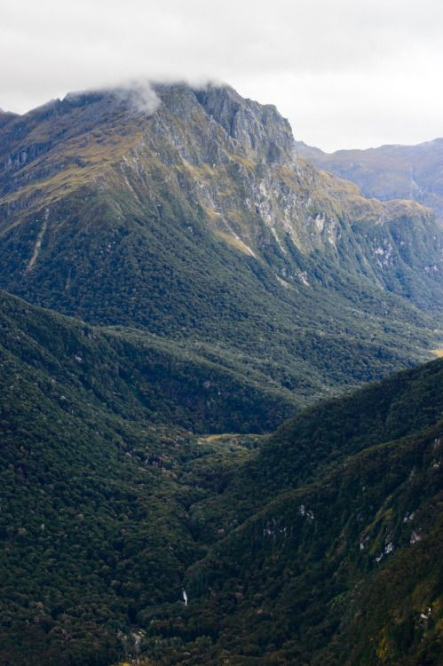 Kepler Track, South Island, New Zealand #newzealandwalkingtours #newzealandwalkingtracks http://newzealandwalkingtours.com