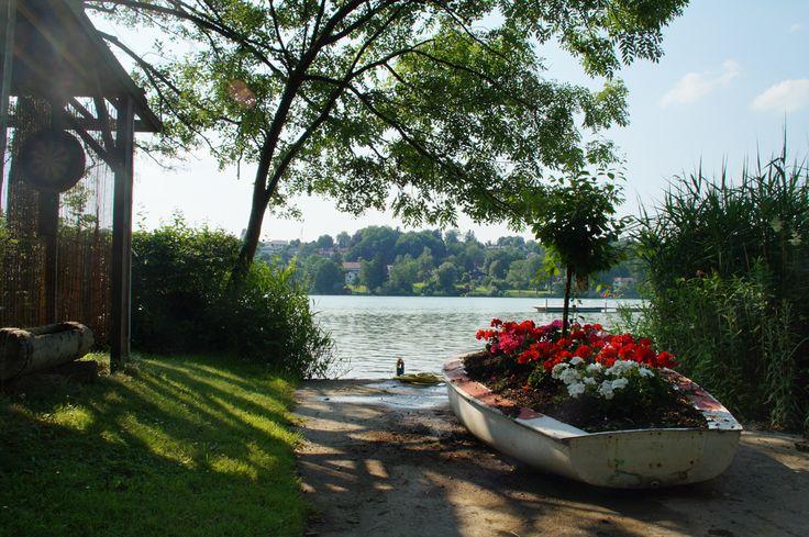 Blick auf den See - Camping Pilsensee