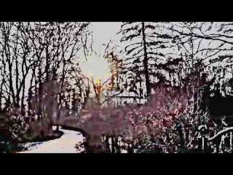 FraGILe-carpet crawlers (Genesis Cover) - YouTube