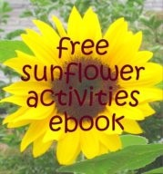 20 best preschool sunflowers images on pinterest sunflowers free sunflower activities ebook packed with ideas for adding maths science literacy and fandeluxe PDF
