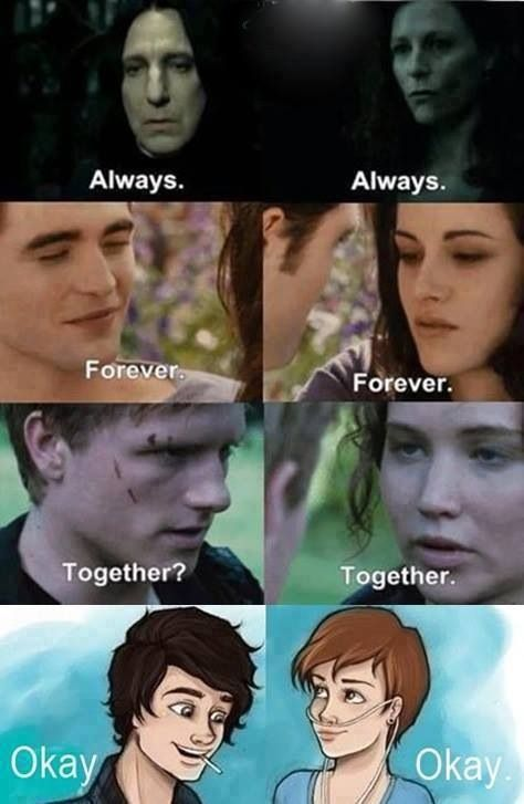 Awesome!! FANDOMS UNITE! Love / romance / (ugh Twilight...) Hunger Games / Peeta / Katniss / Harry Potter /