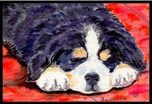 Bernese Mountain Dog Indoor / Outdoor Floor MAT 18 X 27 Inches by Caroline's Treasures. $26.99. INDOOR / OUTDOOR FLOOR MAT This is available in either 18 inch by 27 inch Action Back Felt Floor Mat / Carpet / Rug that is Made and Printed in the USA. A Black binding tape is sewn around the mat for durability and to nicely frame the artwork. The mat has been permenantly dyed for moderate traffic and can be placed inside or out (only under a covered space). Durable and fade resis...