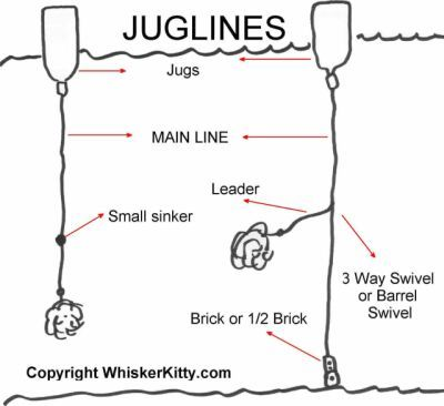Jug line google search cool stuff pinterest fish for Jug fishing for catfish