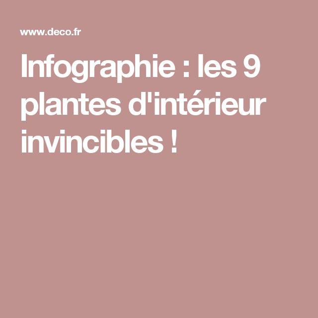 Infographie : les 9 plantes d'intérieur invincibles !