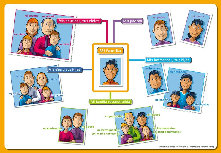 Vocabulary related to 'my family' from ¡Anímate! Hatier Editions