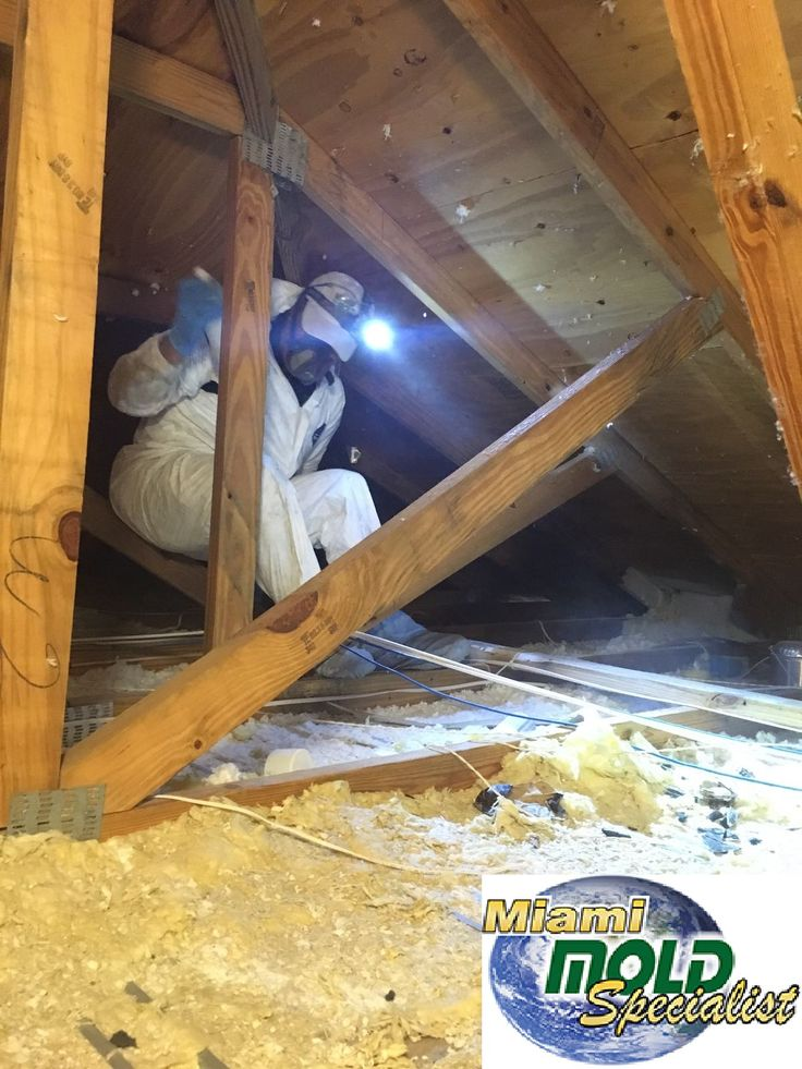Miami Mold Specialist is the only source you need for #mold #inspections, #testing, #assessment #removal, #disposal, and #remediation. We use state of the art #detection #methods for all mold inspections.