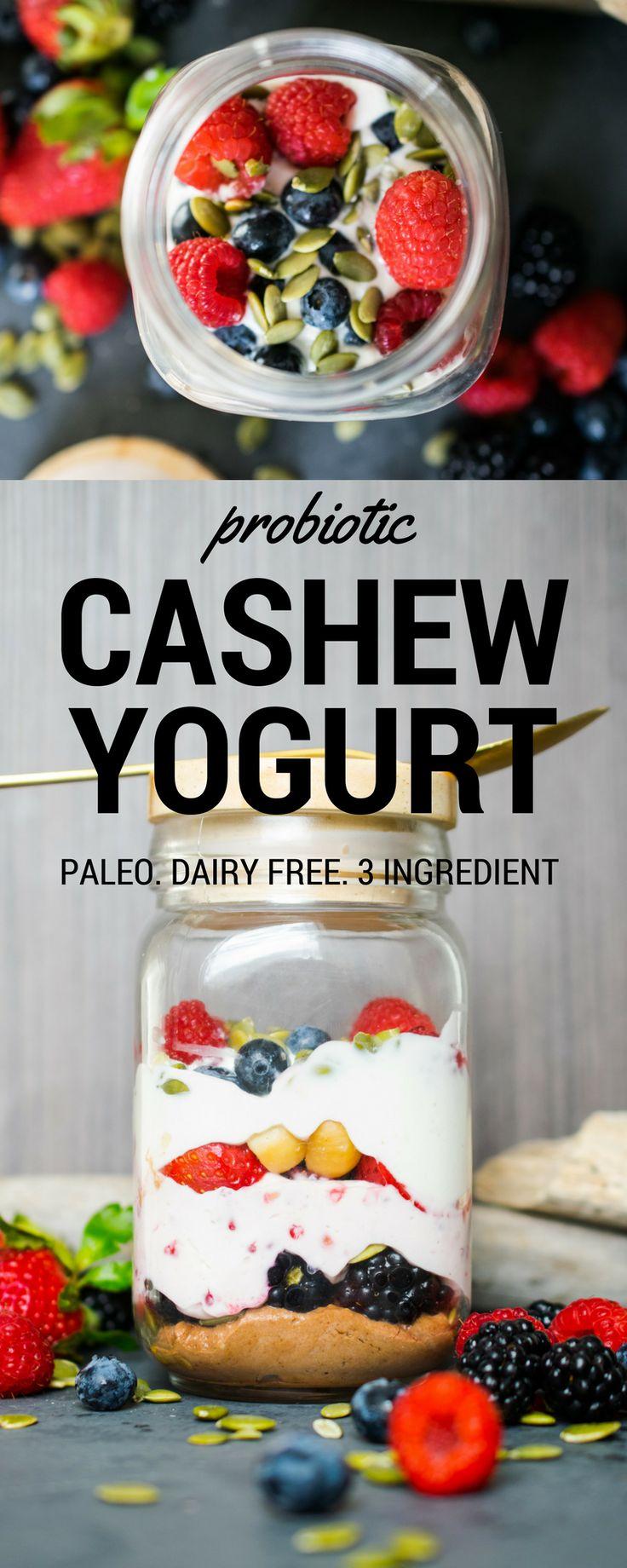 Probiotic Cashew Yogurt (Greek Style Paleo Yogurt) – Castaway Kitchen