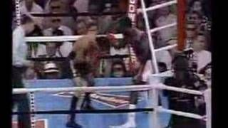 Past australian boxing champions Jeff fenech - YouTube