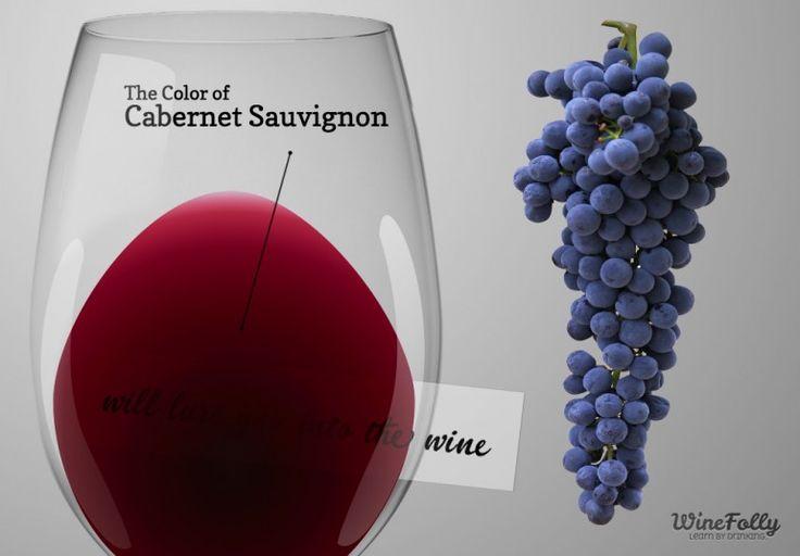 The Guide to Cabernet Sauvignon Red Wine | Wine Folly