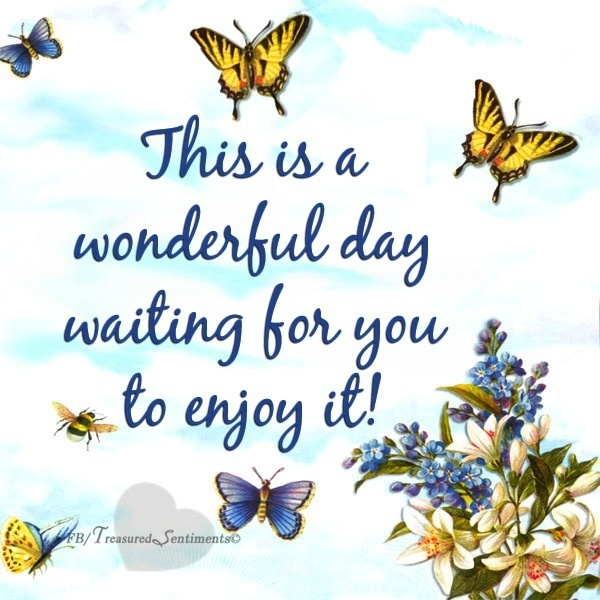 17 best images about day by day on pinterest good day for Quotes on enjoying the day