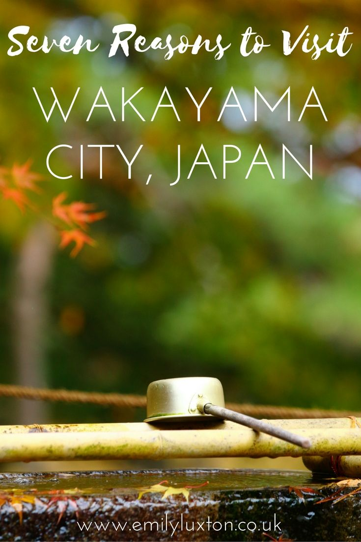 Seven Reasons to Visit Wakayama City. Discover a whole new side of Japan that's totally off the beaten path!