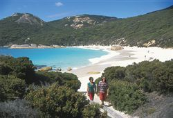 Coastline Albany Western Australia Tourism  The coastline surrounding Albany is some of the most raw and dramatic settings in Western Australia, and indeed the world. Rugged coastal cliffs and rocks, sandy white beaches and thick forest comprise much of the coastline vistas.