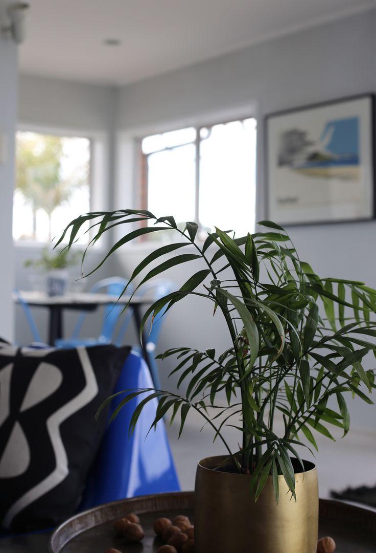 #bronzepot #indoorplants #Homestaging #retrostyle #interiorstyling by #placesandgraces