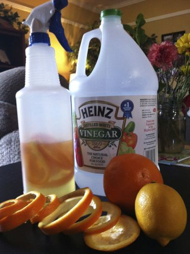 Homemade window cleaner: 1 cup rubbing alcohol, 1 cup white vinegar, 2 T cornstarch, 3 cups water, orange and lemon peels.