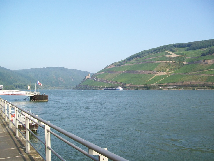 Morning on the Rhine, Germany