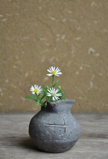 土の素材でできた野趣あふれる花瓶に、可憐な小さなお花を。 野花を使えば、そこには自然を連想させるような世界観が。