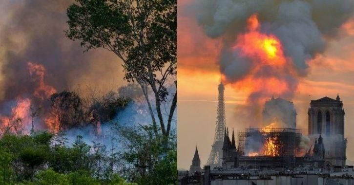 Amazon And Notre Dame Understanding Instead Of Shaming Amazon