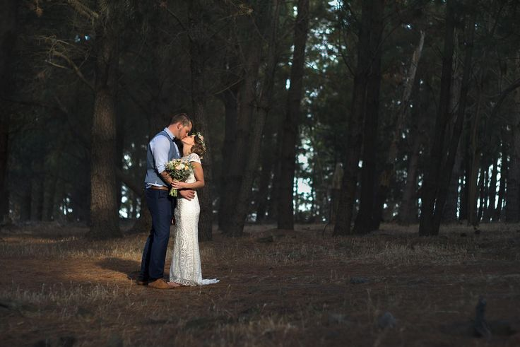 A beautiful shot of Matt& Stacey in the pine forest. (Photo by Photography by David)