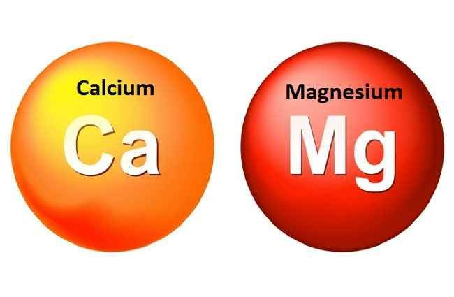 best calcium magnesium vitamin d supplement On the flip ...