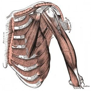 What is the MS Hug / Girdle Pain / Girdle Pain Sensation / Squeeze 'O' Death? - Diagnosis: Multiple Sclerosis