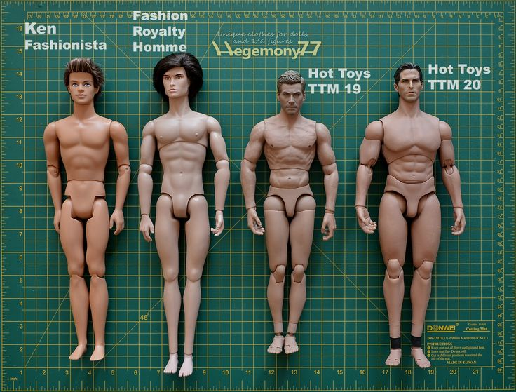1/ 6 scale male dolls and action figures comparison photo - Ken Fashionista - Fashion Royalty Homme - Hot Toys TrueType Male Body TTM 19 Muscular Caucasian Version 12 inch figure - Hot Toys 1/6 Tru...