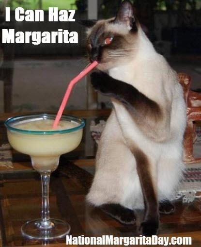 Are you ready to celebrate #NationalMargaritaDay? #HAPPYALOHAFRIDAY!! https://www.facebook.com/photo.php?fbid=593079867387516=a.243876182307888.72166.243748478987325=1
