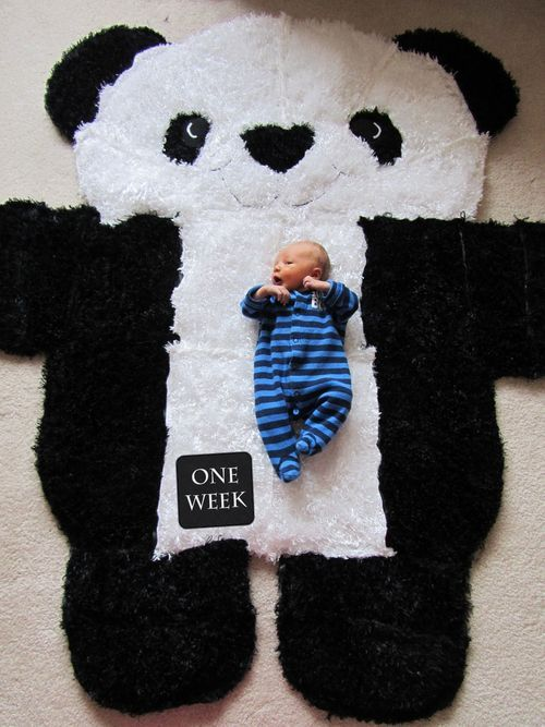 Taking pictures of baby every week as they grow on adorable over-sized panda rug.