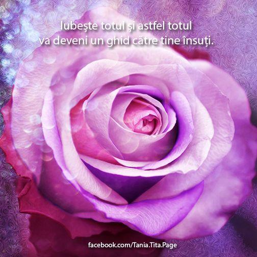 Iubeste tot ce te infricoseaza. Iubeste-ti ranile. Iubeste momentul prezent cu tot ceea ce iti aduce el. Iubeste oamenii de langa tine si tot ceea ce experimentezi alaturi de ei. Iubeste totul si astfel totul va deveni un ghid catre tine insuti. http://on.fb.me/YkhCK5