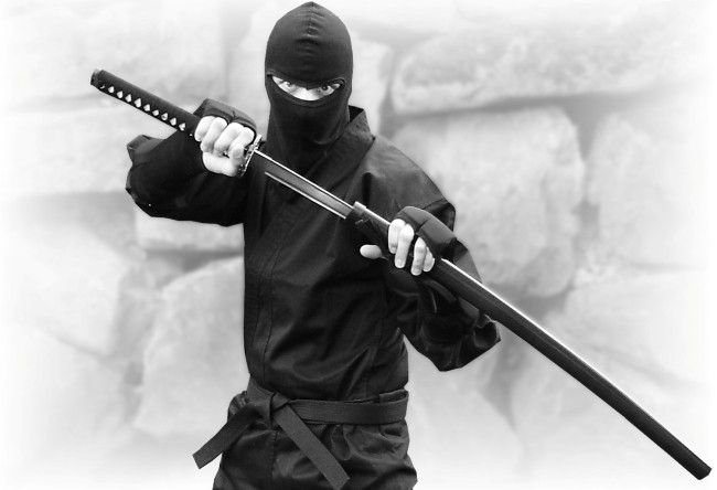 While most Ninja Uniforms are made out of cheap 8 oz or 10 oz cloth, this uniform is made out of 14oz material.  This is the real weight and quality real Ninjitsu practitioner's use. $49.95: http://www.kageninjagear.com/ninja-uniforms/ninja-uniform.html
