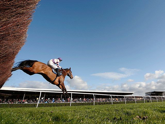 Market Movers: Thursday November 17  https://www.racingvalue.com/market-movers-thursday-november-17/
