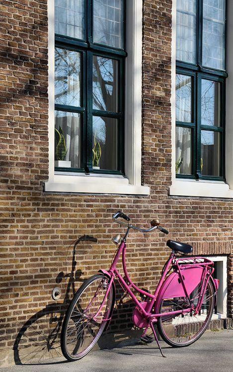 de roze fiets