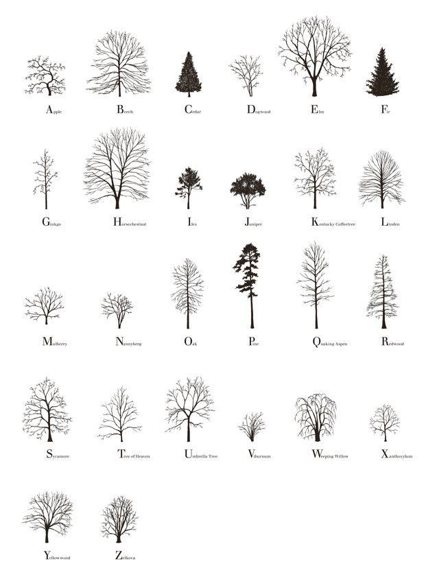 Architecture Drawing Of Trees 110 best rendering images on pinterest | landscaping, drawing and