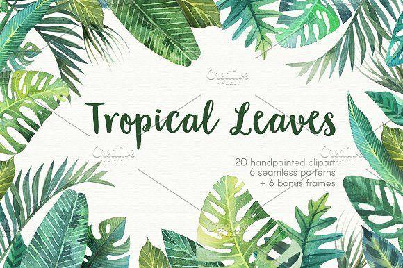 Tropical leaves by Sсherbynka on @creativemarket