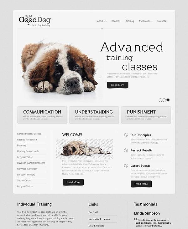 23 best web templates images on pinterest design websites site