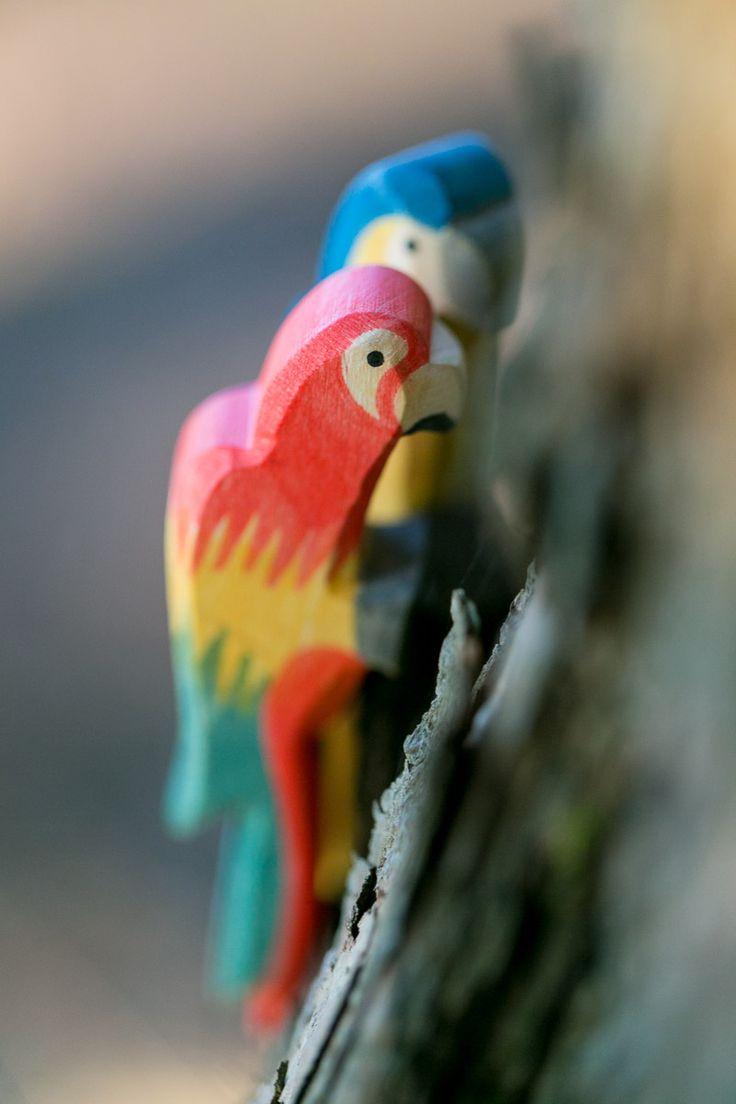 Ostheimer Papagei - wundervolles Holzspielzeug, Waldorf unbedenklich, exotische Tiere - moderne und authentische Werbeaufnahmen in der Natur ungestellt und echt