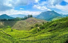3 Star Munnar Adventure Package