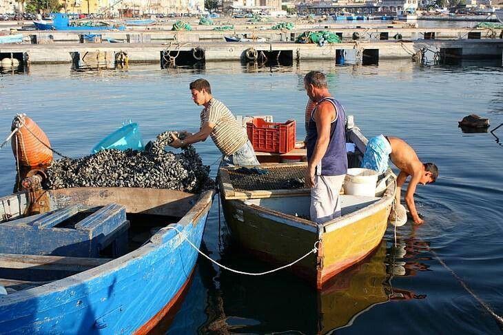 pescatori di Taranto vecchia