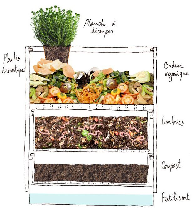 Vermicomposting Uses Worms To Turn Organic Materials Into