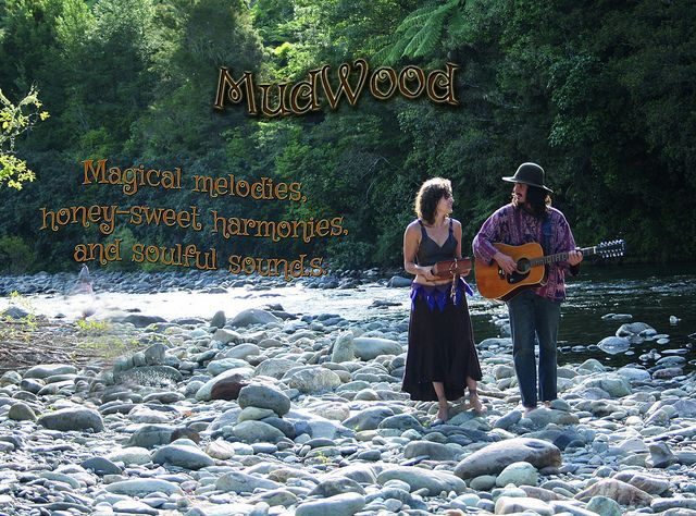 MudWood by the river