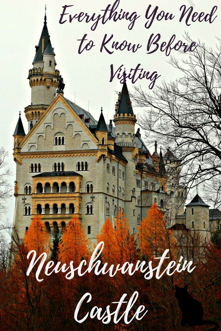 Neuschwanstein Castle looks like it's been plucked from your favourite fairy tale with its majestic exterior and picturesque setting of the Bavarian Alps. See how to visit the castle using public transports, the best way to buy tickets, a timetable and food options. #Germany #NeuschwansteinCastle #DisneyCastle #Europe #Castles via @katsgoneglobal