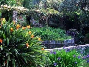 CLOS DU PEYRONNET (jardin privé)  - CLOS DU PEYRONNET (jardin privé)