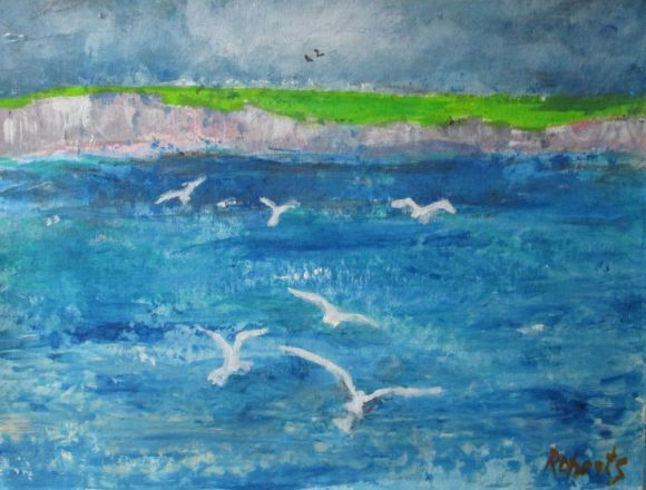 Seagulls over the white cliffs