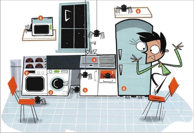 ¿Dónde están las arañas? Vocabulario de la cocina