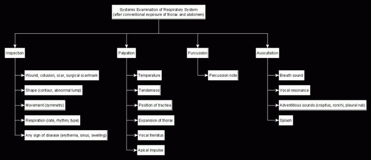 Systemic Examination of Respiratory System – The Paradigm Shift Group