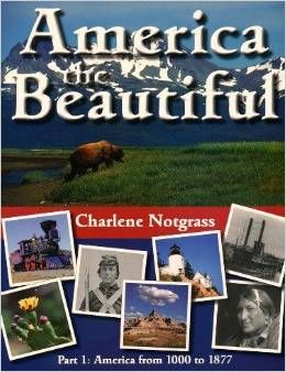 Notgrass History is Christian-based history for middle school and high school.  America the Beautiful is a one year middle school course that combines history, geography, and literature.  American History and World History are high school courses that are rich with literature.  Notgrass also has a government class for middle school and high school.