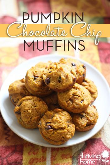Healthy pumpkin chocolate chip muffin recipe. So delicious and at the same time, nutritious! I love making these regular size OR as mini muffins. |Thriving Home