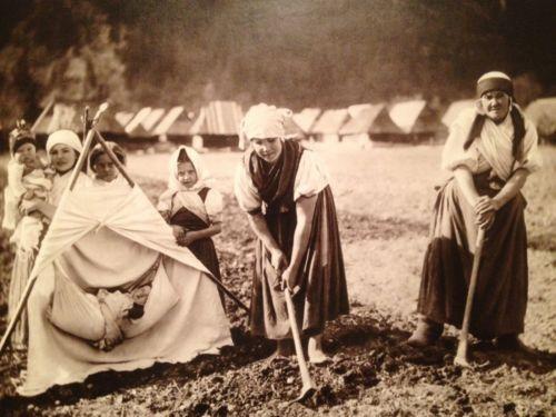 "Pavel Sochan 9x13 Black & White Photograph Slovakia ""In The Field, Gombáš"""