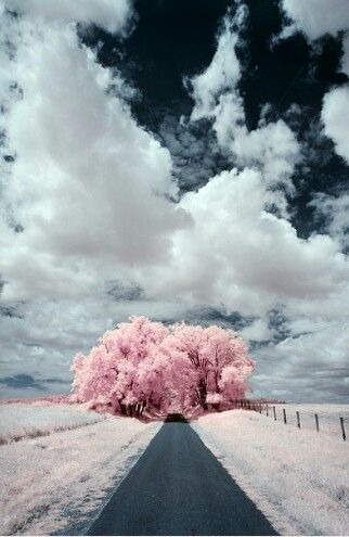 Beautiful! !!